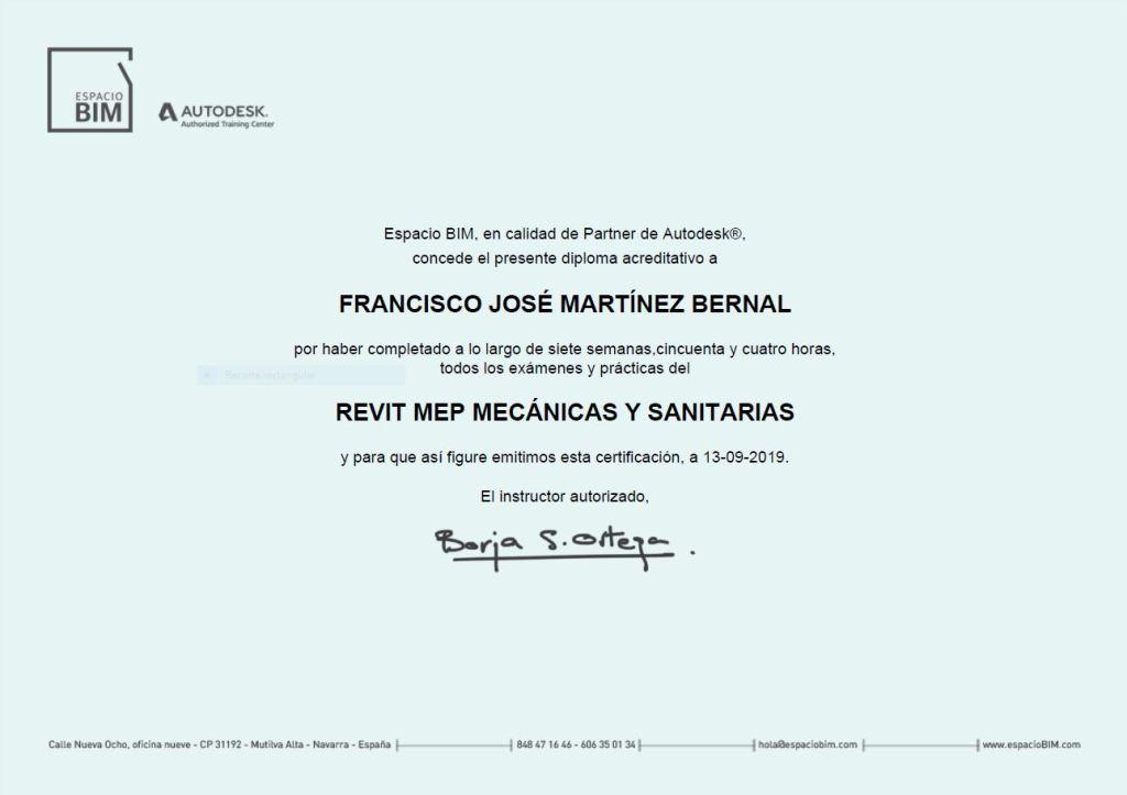 FRANK-ARK-RevitMEP_MP-Diploma